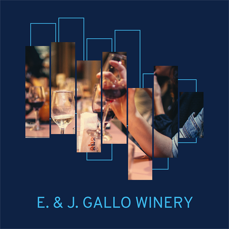 e j gallo winery case study Case study energy efficiency at gallo vineyards  at e & j gallo winery e & j gallo winery has maintained a steadfast commitment  213-gallo-case study.